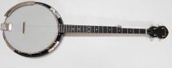 Used Fender Banjo