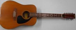 Used Ariana 12 String