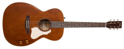 Art&Lutherie Legacy Q