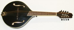 Breedlove Mandolin