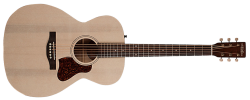 Art & Lutherie Legacy