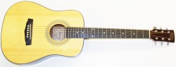 Ibanez Daytripper (Mini Dreadnought Acoustic)