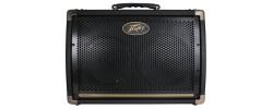 E208 Acoustic Amp