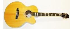 Gibson J-165 EC Maple