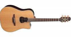 Takamine Garth Brooks GB7C